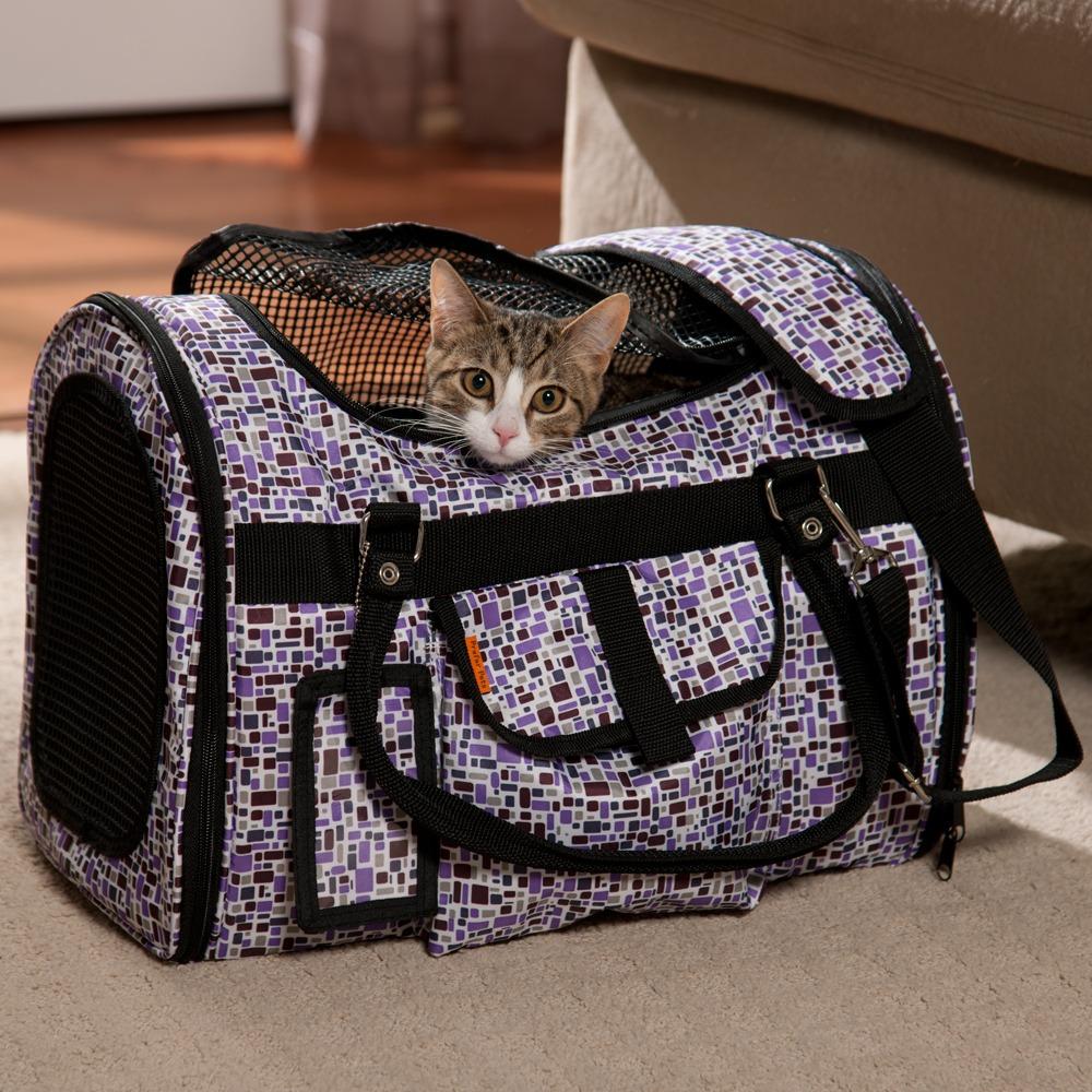 20 Hal yang Wajib Kamu Ketahui Bila Memelihara Kucing 17