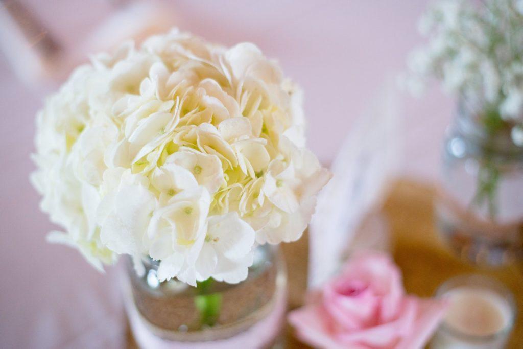 Selain Mawar, Ini 5 Bunga Untuk Ungkapkan Cinta Pada Pasangan 6