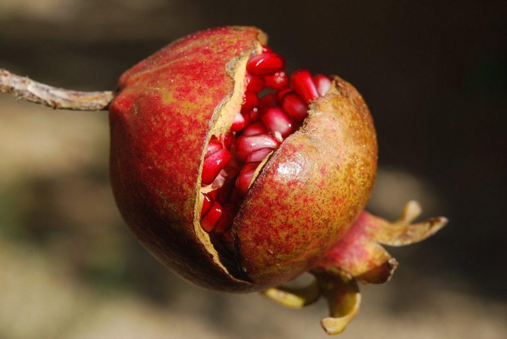 5 Buah & Sayur Yang Melambangkan Cinta 4