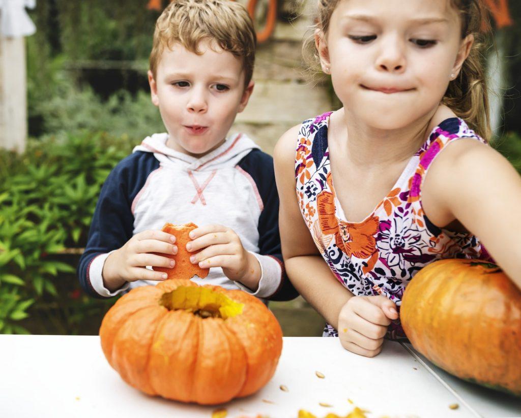 Anak Susah Makan? Cobalah Lakukan 5 Tips Ini, Agar Anak Mudah Makan 5