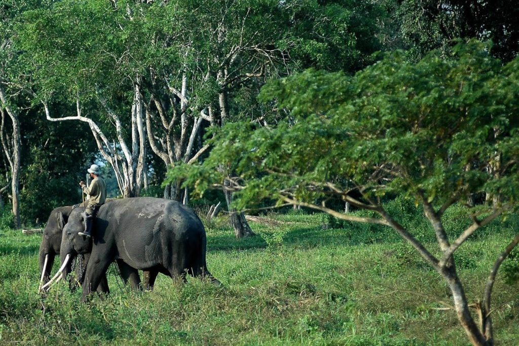 50 Pemandangan Alam Indonesia yang Wajib Traveler Samperin 44