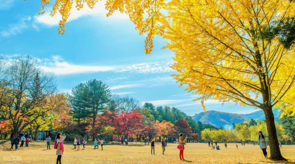 5 Lokasi Syuting Film Korea Yang Ikonik, Harus Kunjungi Saat Berlibur ke Korea 4