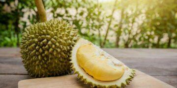 6 Makanan & Minuman Yang Ga Boleh Dimakan Bareng Durian 20
