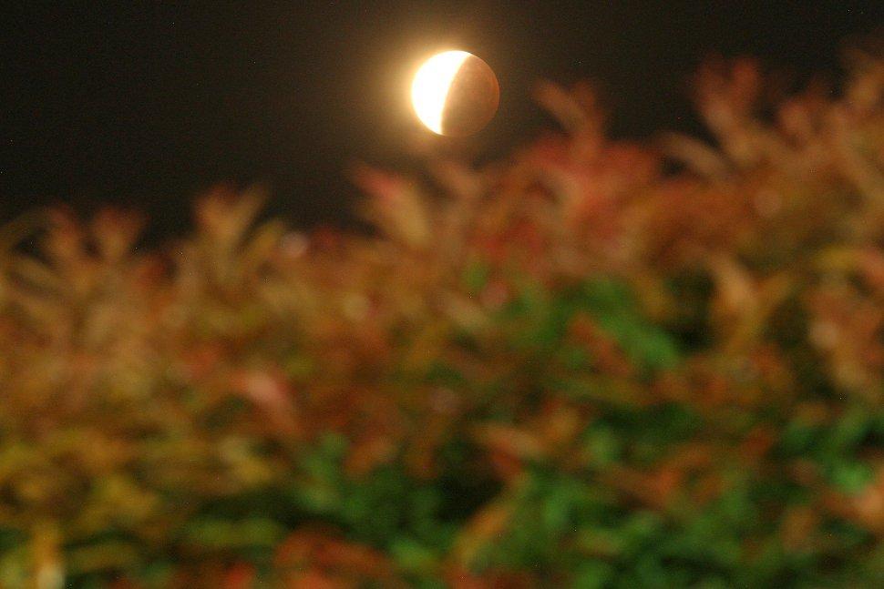 Inilah Penampakan Sebagian Gerhana Bulan 3