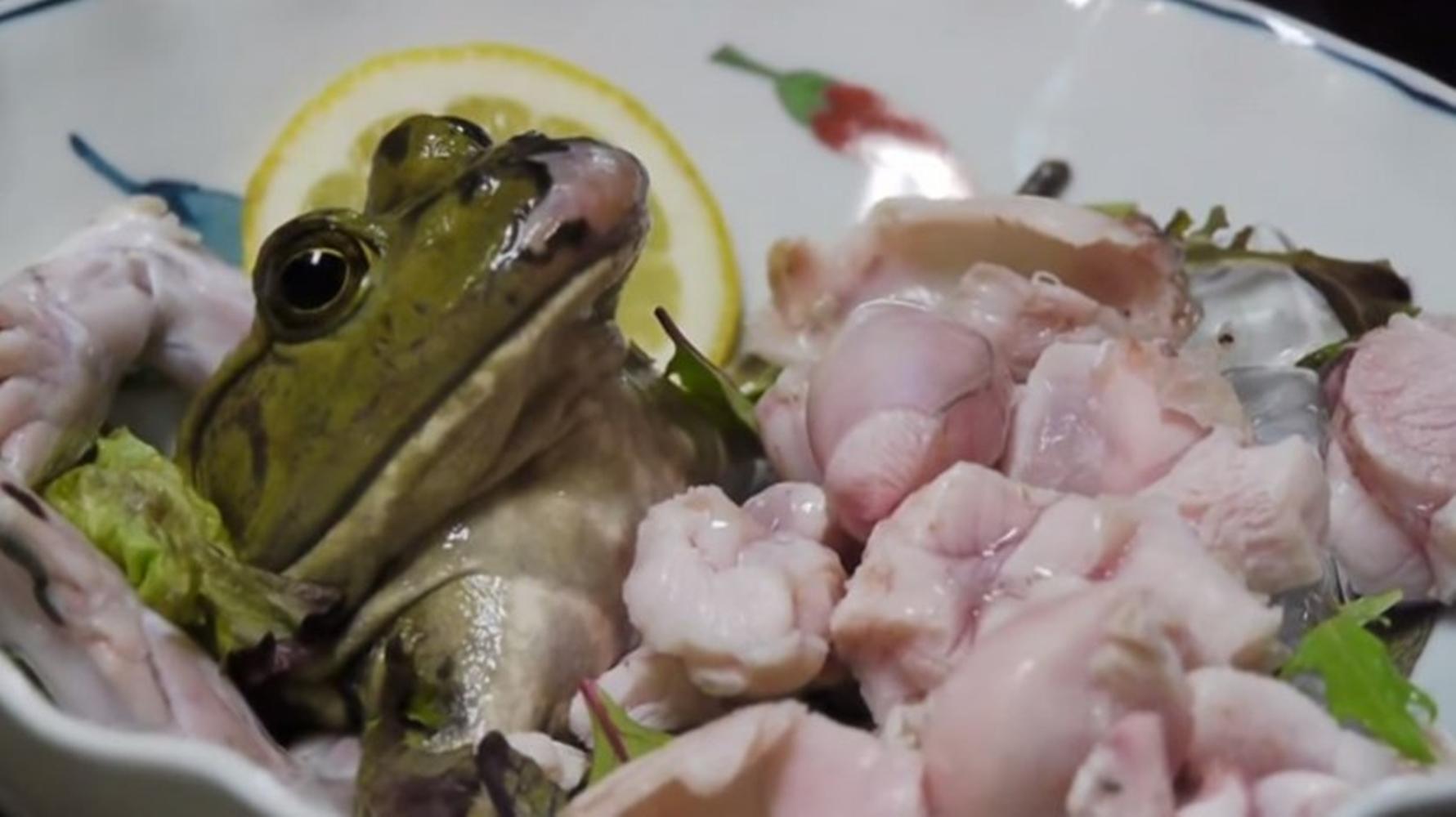 Inilah 5 Kuliner Ekstrem di Jepang, Sudahkah Kamu Mencobanya ? 5