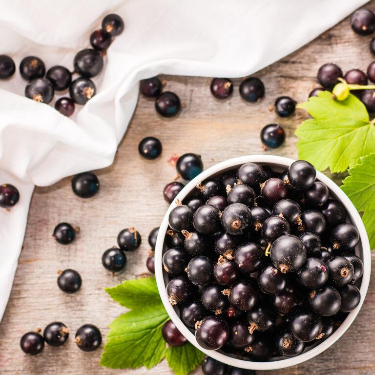 5 Manfaat Acai Berry Untuk Kesehatan Tubuhmu 1