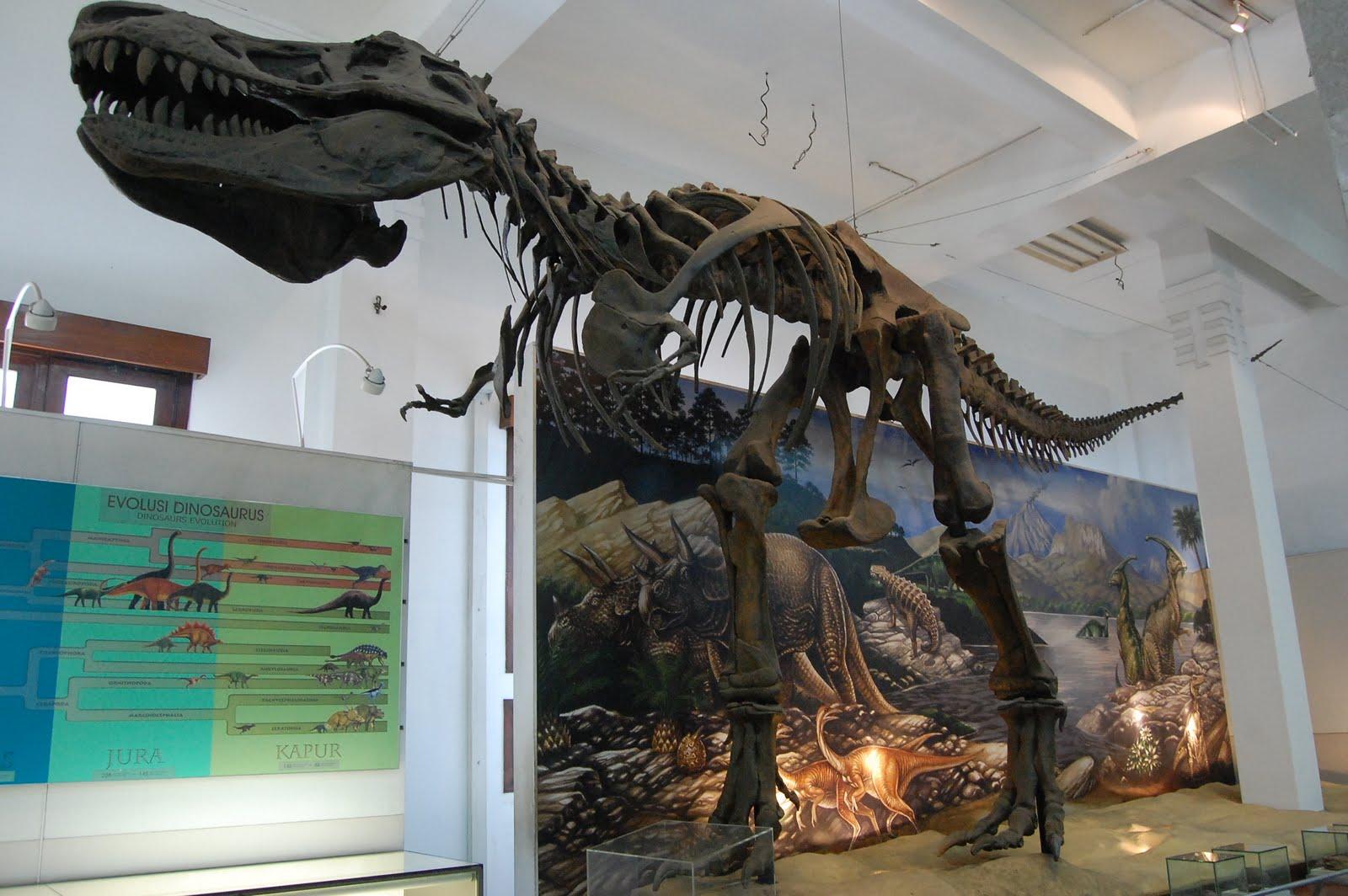 Memperingati Hari Museum Indonesia, Inilah 5 Museum Unik Yang Wajib di Kunjungi 3