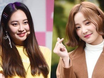Taeha dan Yeonwoo Resmi Keluar Dari Momoland 14