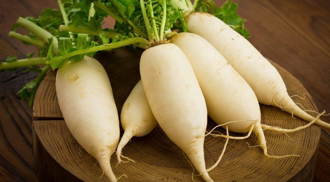 Perlu Diperhatikan, 5 Sayuran Yang Tidak Boleh Dikonsumsi Secara Berlebihan 6