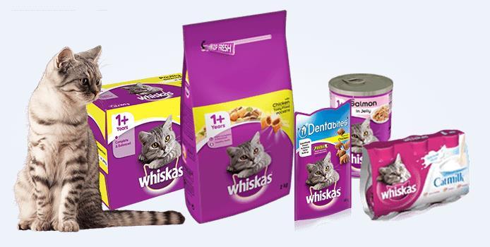 5 Jenis Makanan Kucing Yang Cocok dan Berkualitas Terbaik Untuk Pecinta Kucing Miliki 6