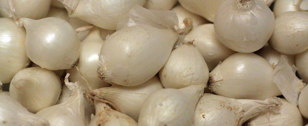 5 Manfaat Bawang Putih & Kandungan yang Harus anda Ketahui 2