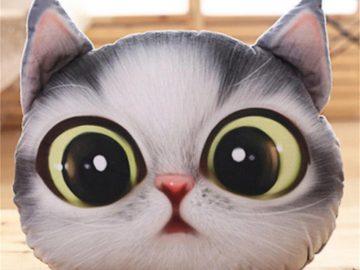 10 Kado Untuk Cat Lovers Yang Murah Dan Lucu, Dijamin Akan Suka ! 12