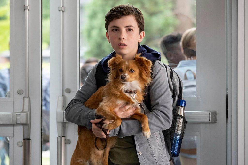 100 Serial & Film Netflix Terbaik Yang Wajib Ditonton 52