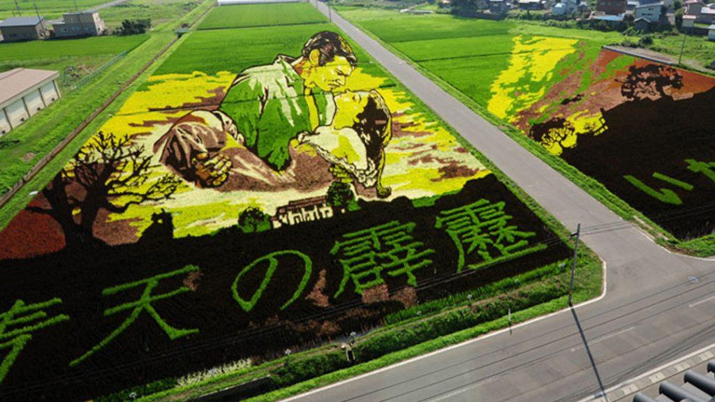 Tambo Art, Seni 'Melukis' di Sawah Asal Negeri Jepang 5