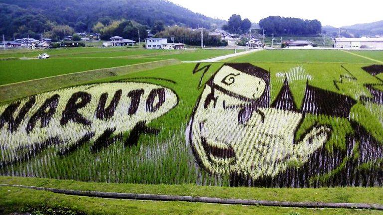 Tambo Art, Seni 'Melukis' di Sawah Asal Negeri Jepang 1