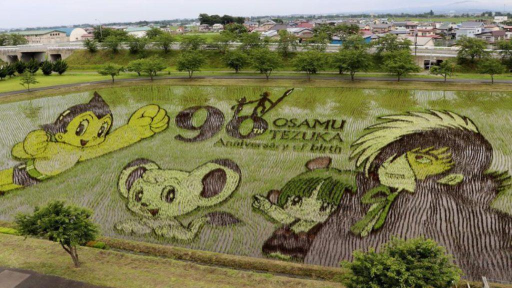 Tambo Art, Seni 'Melukis' di Sawah Asal Negeri Jepang 3