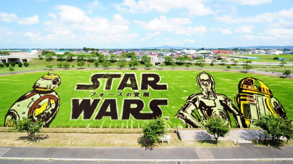 Tambo Art, Seni 'Melukis' di Sawah Asal Negeri Jepang 4