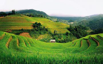 5 Desa Terkenal dan Terindah di Indonesia, Yuk Mampir 4