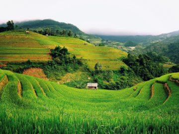 5 Desa Terkenal dan Terindah di Indonesia, Yuk Mampir 14