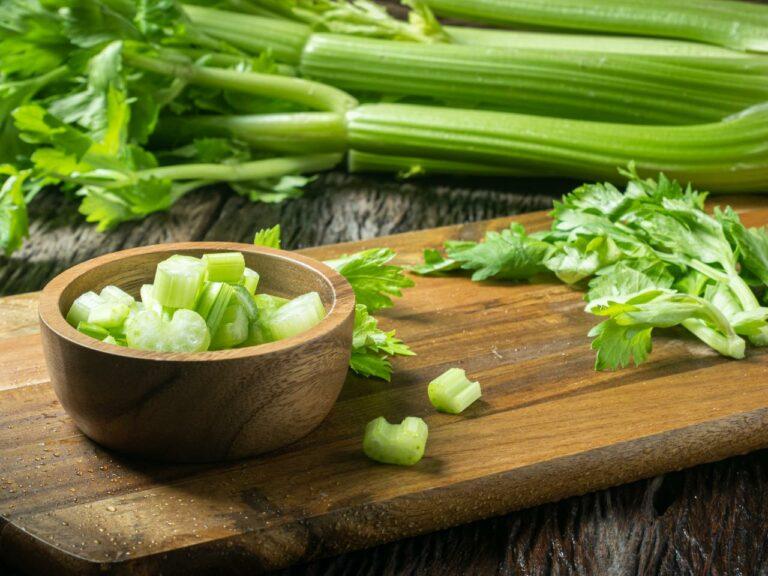 8 Manfaat dari Seledri, Tanaman Mungil Kaya Nutrisi 1