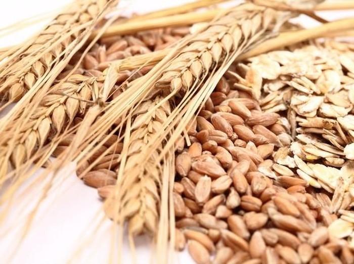 5 Bahan Makanan Pengganti Nasi, Program Diet Juga Cocok 4