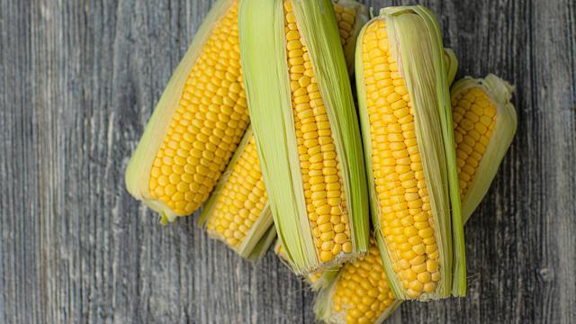 5 Bahan Makanan Pengganti Nasi, Program Diet Juga Cocok 6