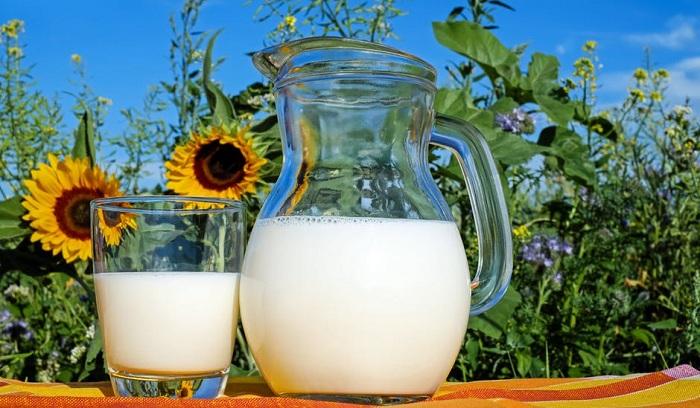 5 Sarapan Pagi Yang Sehat Untuk Meningkatkan Imun Tubuh, Mudah dan Enak 7