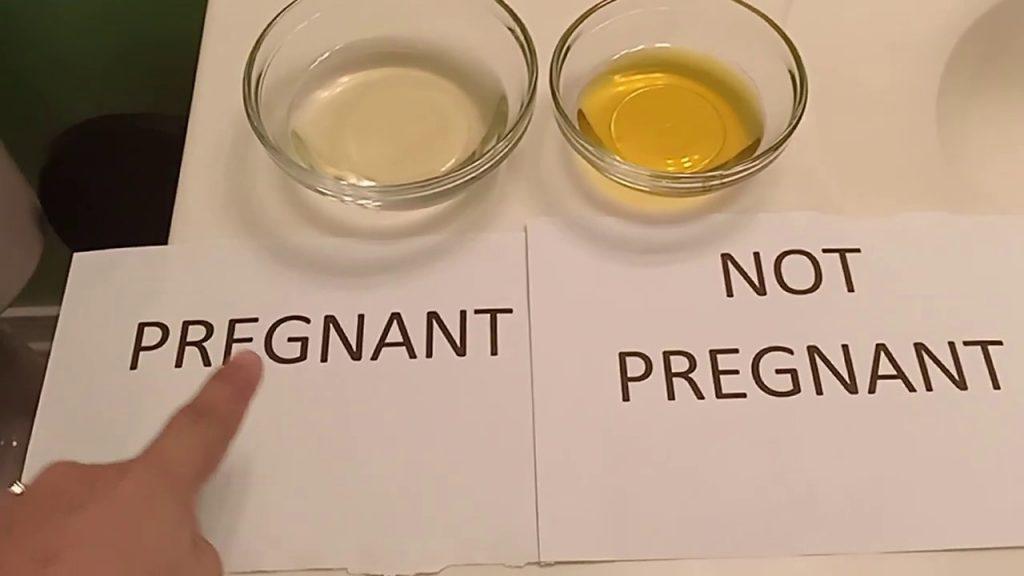 8 Metode Tes Kehamilan Paling Aneh yang Pernah Ada, Mau Coba? 3