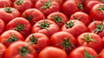 Jerawatan? Nih, Ogut Kasih Tahu Manfaat Tomat! 3