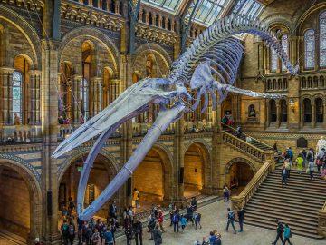 7 Museum Terbaik yang Bisa Kamu Kunjungi di London, Keren Abis! 5