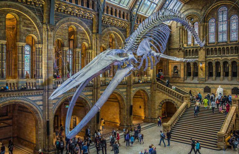 7 Museum Terbaik yang Bisa Kamu Kunjungi di London, Keren Abis! 1