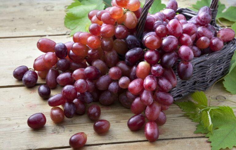 6 Manfaat Mengonsumsi Anggur Merah, Buah Super Kaya Nutrisi 1