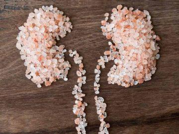 Jenis-jenis Makanan yang Menjadi Pantangan Penderita Batu Ginjal 5