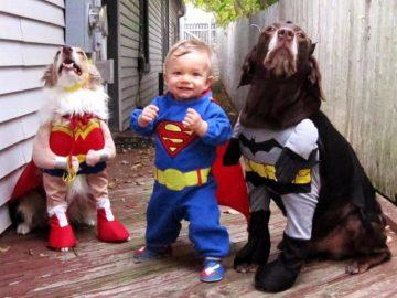 12 Foto Cosplay Anak Kecil Bersama Anjing Kesayangannya, Bikin Gemas! 5