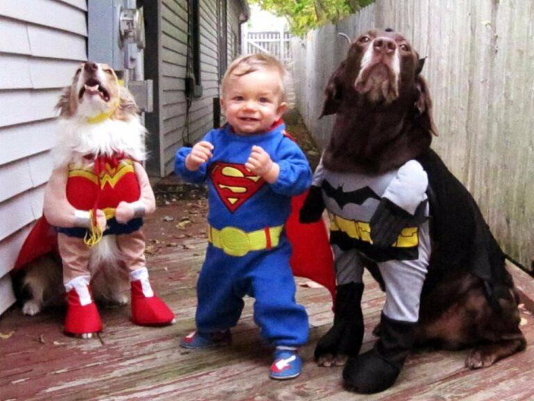 12 Foto Cosplay Anak Kecil Bersama Anjing Kesayangannya, Bikin Gemas! 1