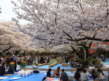 10 Taman Kota Terbaik Untuk Melepas Penat 3