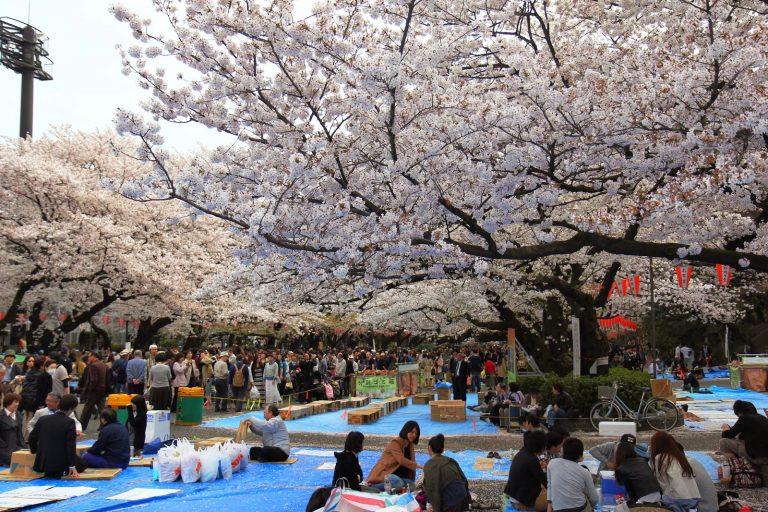 10 Taman Kota Terbaik Untuk Melepas Penat 1