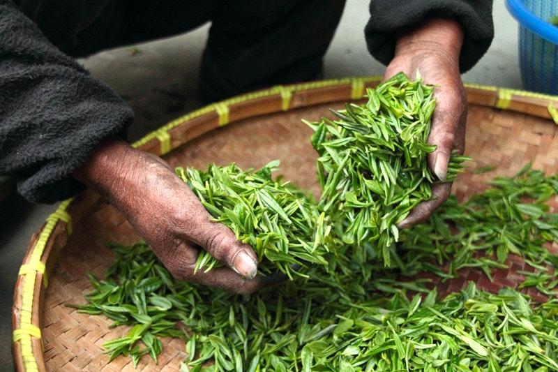 Tradisi Minum Teh, Bagian Kolonialisme yang Masih Bertahan 4