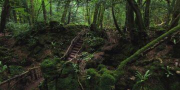 10 Tempat Mistis di Inggris yang Bisa Kamu Kunjungi 17