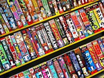 Apa Itu Manga, Light Novel, & Visual Novel? Apa Bedanya? 12