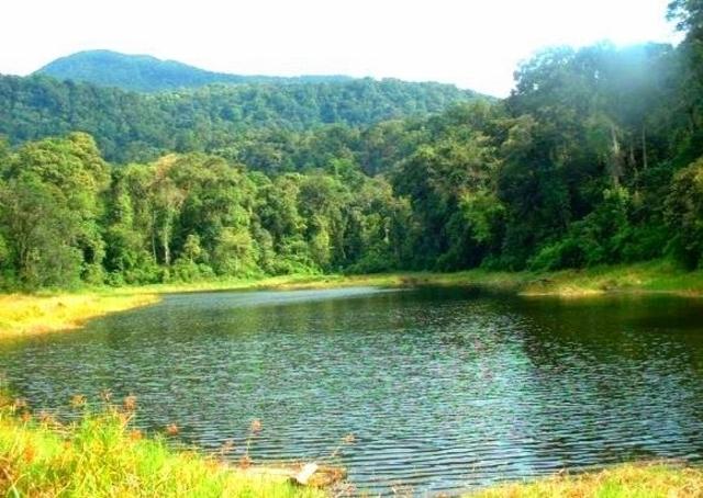 5 Taman Nasional di Sumatra yang Cocok Buat Liburan 7