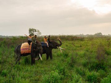 5 Taman Nasional di Sumatra yang Cocok Buat Liburan 9