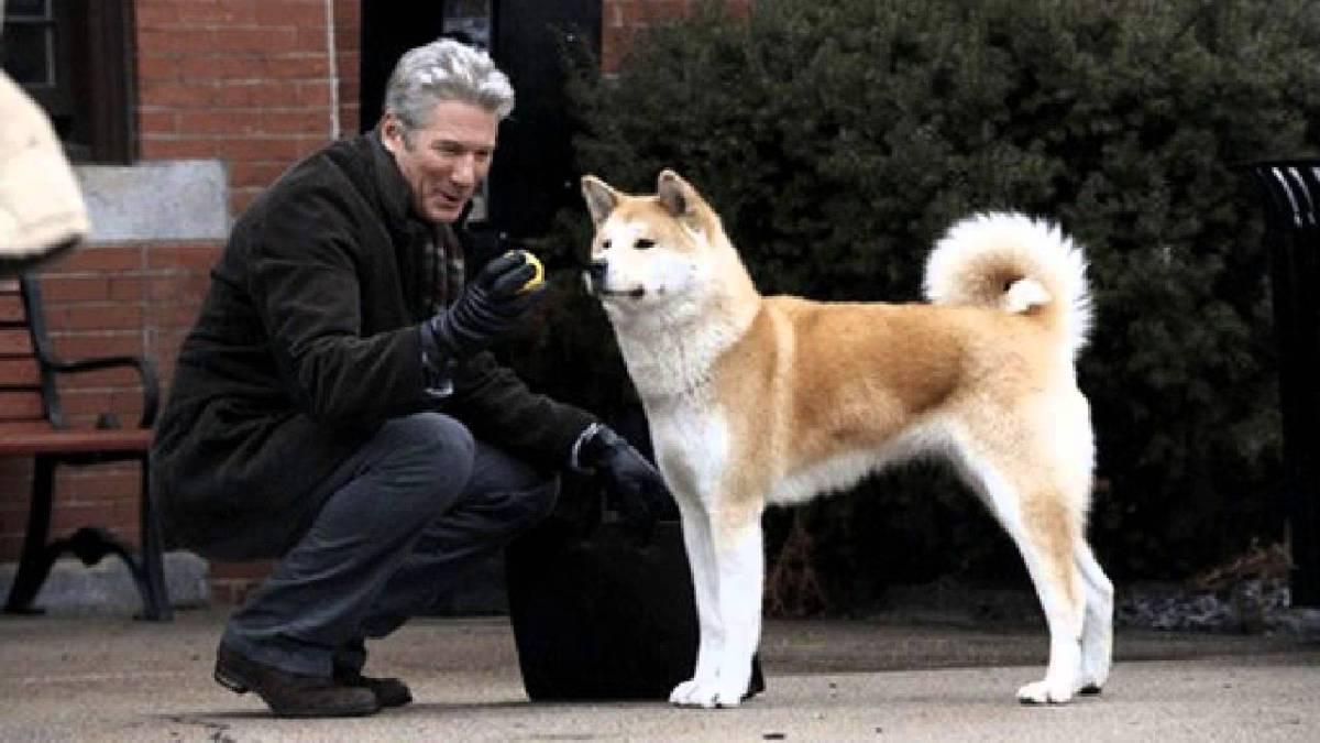 5 Film Terbaik Tentang Persahabatan Manusia Dengan Hewan 3