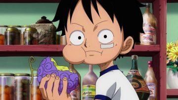3 Jenis Buah Iblis Di One Piece Beserta Penggunanya 1