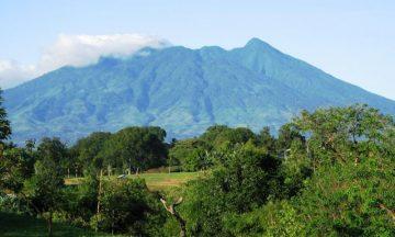 6 Hal Menarik yang Dapat Dilakukan di Taman Nasional Gunung Palung 12