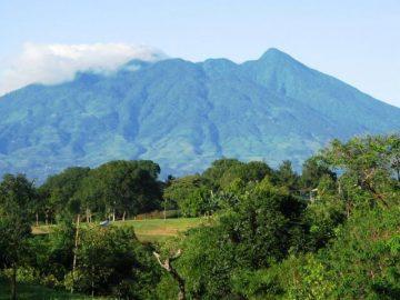 6 Hal Menarik yang Dapat Dilakukan di Taman Nasional Gunung Palung 17