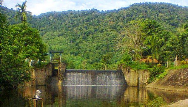 6 Hal Menarik yang Dapat Dilakukan di Taman Nasional Gunung Palung 8