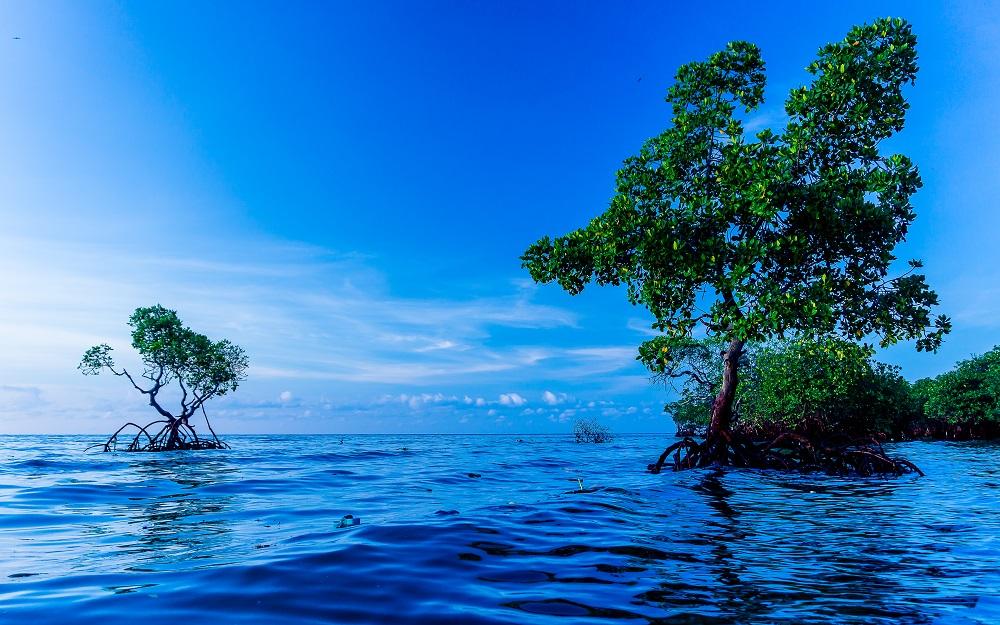 12 Destinasi Wisata Terbaik di Polewali Mandar 13