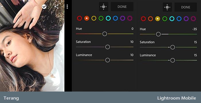 MIX - Cara Edit Foto Agar Terang di Lightroom