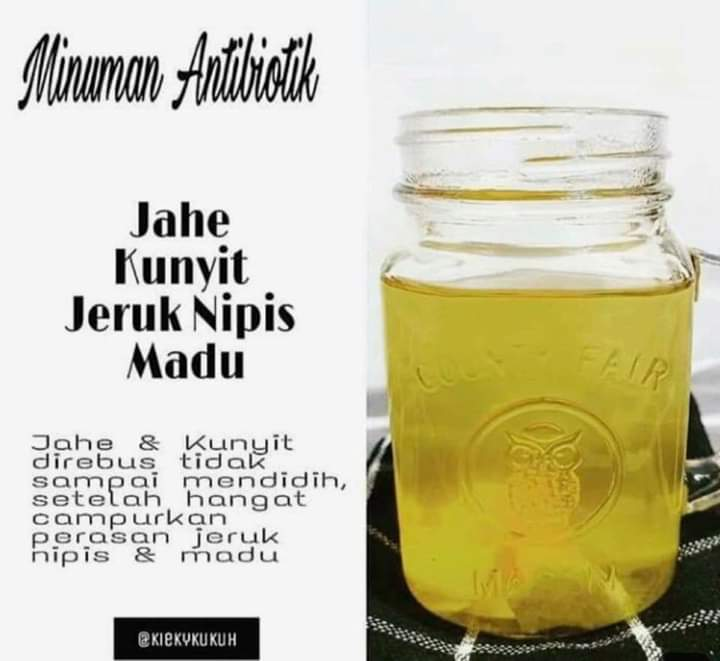Manfaat Tanaman Herbal & Penyakit Kuning 4